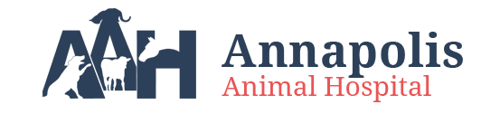 New Minas, NS Veterinarian Animal Clinic | Annapolis Animal Hospital